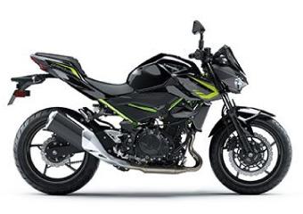 バイク種類 ストリートファイター Z250